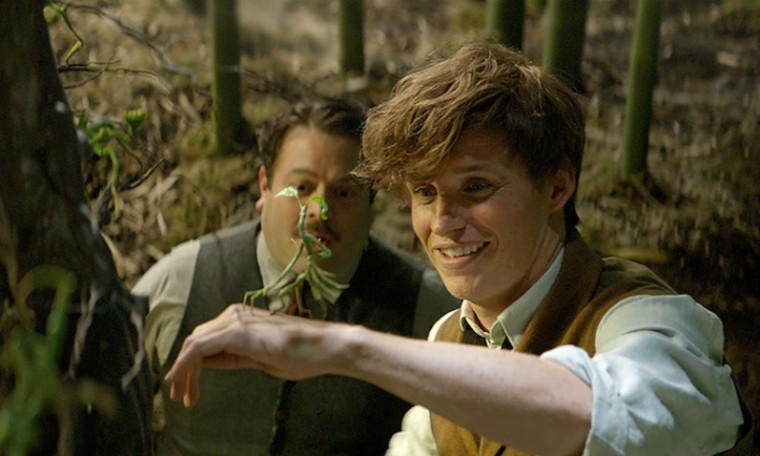 Fantastic Beasts and Where to Find Them - film review by Daniella Christina
